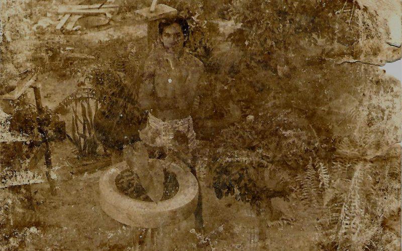 FOTO DE 1979, WILLIS PAI EM MEIO AS SUAS PLANTAS